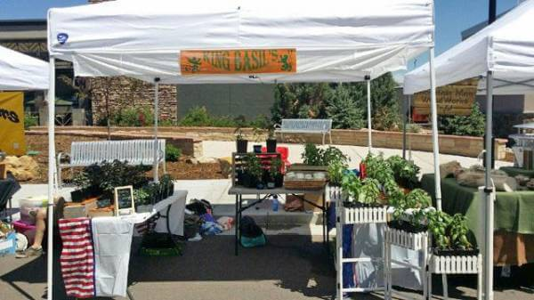 New vendor to offer banquet of basil